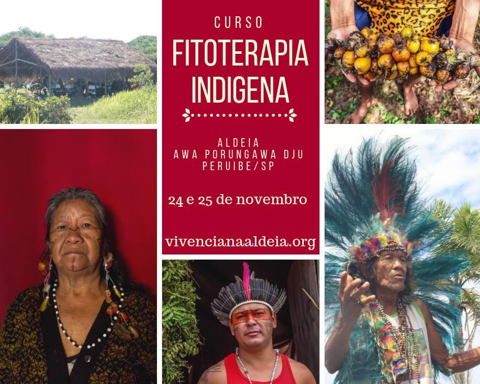 Fitoterapia Indígena