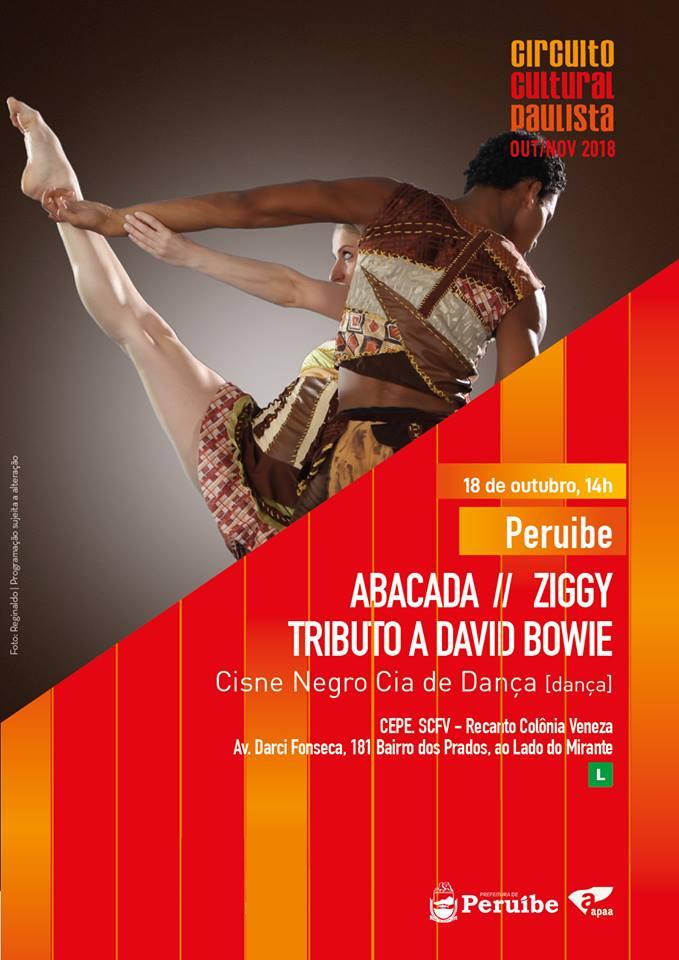 Tributo a David Bowie - Circuito Cultural Paulista